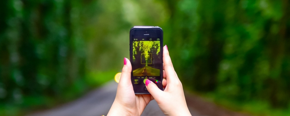 woman-holding-smartphone-on-street-between-trees-1784580
